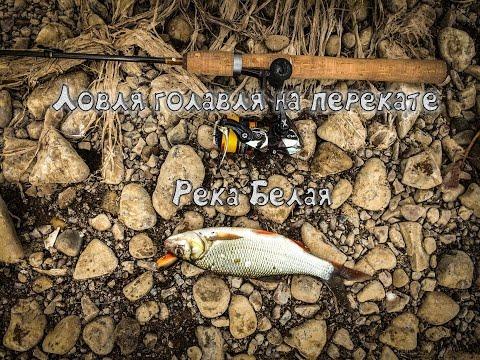 ловля голавля на реке уфа