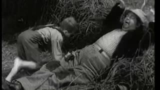 Luffaren och Rasmus: Kattvisan (Tänk jag drömde i natt)