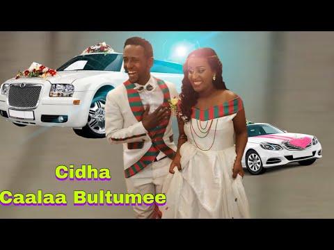 Xxx Mp4 Cidha Caalaa Bultumee Best Oromo Wedding 3gp Sex