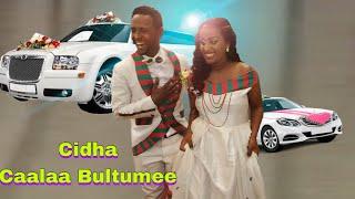 Cidha caalaa bultumee best oromo wedding