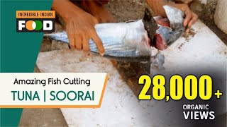 Soorai Meen | Tuna fish | Incredible Cutting & Cleaning | Lighthouse | at Chennai in India