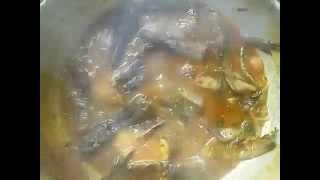 Bangladeshi Special  Shing Fish masala recipe
