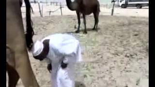 شوف وش يصير ههههههه
