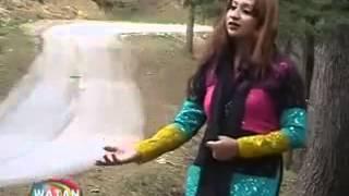 Afsha zabi song