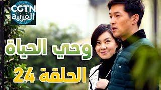 مسلسل وحي الحياة #الحلقة 24
