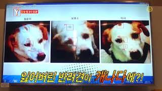 SBS [궁금한 이야기 Y] - 18년 5월 25일(금) 예고 / 'Y-Story' Preview