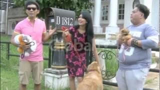 Kartika Putri Punya 14 Anjing Di Rumahnya Loh!