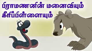 Snake And The Mongoose - Panchatantra Tales -(தமிழ் கதைகள்)Tamil Moral Stories For Kids