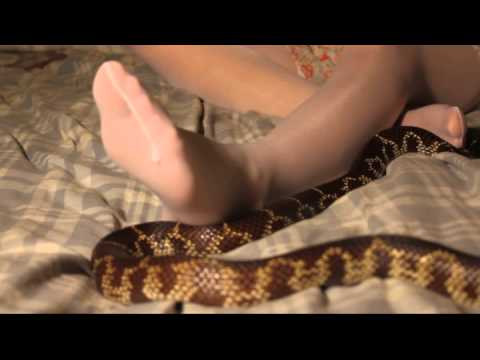 Stockings and Snake