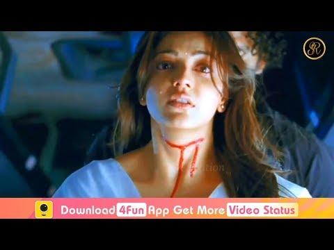 Xxx Mp4 💕💕Very Heart Touching Love💖💖 Kajal Agarwal Vs Allu Arjun Whatsapp Status Video 2018 Mr X Song 3gp Sex