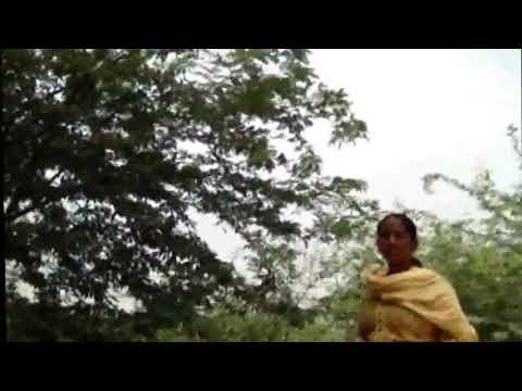 Xxx Mp4 XXX MMS VIDEO जंगल में मंगल कुछ ऐसा हुआ II 3gp Sex