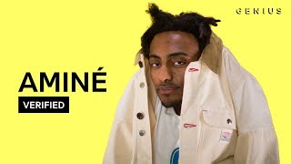 "Aminé ""Spice Girl"" Official Lyrics & Meaning 