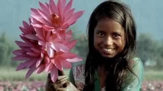 Visit Bangladesh  - Life Happens Here