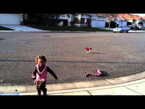 Xxx Mp4 Dog Chases Little Girl 3gp Sex