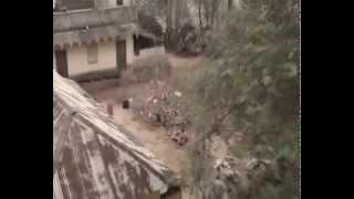 Santali short flim 'Asha- The movie'(Santali Short Flim)