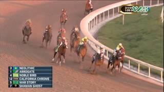 Arrogate wins the world's richest horse race : Pegasus World Cup 2017