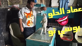 تدريب القطه بوسي نو ههههههههه🐈😂
