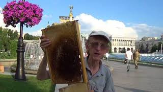 Beekeeping in Ukraine. Good, Really Productive Beehive!!! Story #27.