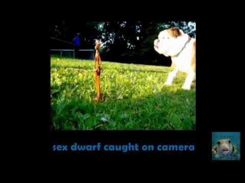 ROSWELL SEX DWARF CAUGHT ON CAMERA - ALIEN UFO BLUE L.E.D.S. INCIDENT (schwarz zu blau) 6
