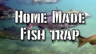 How to Make a 2 Liter Bottle Fish Trap: Survival Hack