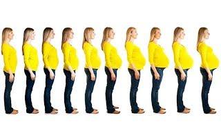 Hamilelik Haftası Nasıl Hesaplanır ?