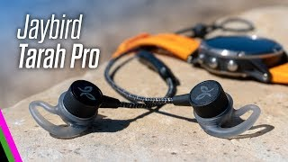 Jaybird Tarah Pro Premium Sport Headphones Review (vs X4)