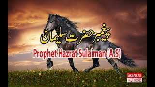 Hazrat SULAIMAN A.S Story in Urdu/Hindi