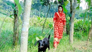 Love the goat | Village Beautiful Girl | How to love the creatures | Dorojati Kholo