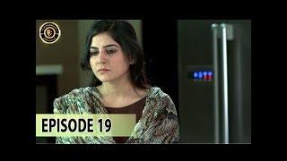 Teri Raza Episode 19 - 9th Nov 2017 - Sanam Baloch & Shehroz Sabzwari - Top Pakistani Drama