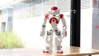Evolution Of Dance by NAO Robot