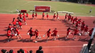 chamber Da Vinci cheerleading 2015--2016