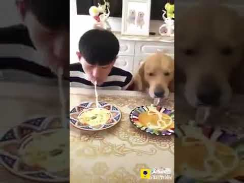 Xxx Mp4 Dog And Kid Funny Video 3gp Sex
