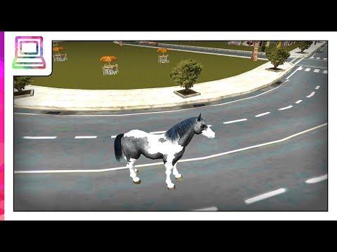 Wild Pony Horse (Horse Game)