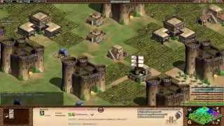 Aoe2 HD: 3v5 Double Arabia (Persians, Mass War Elephants)