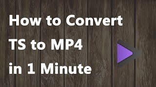 How to Convert TS to MP4 in 1 Minute