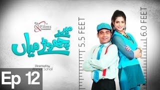 Meray Chotay Mian - Episode 12 on Express Entertainment