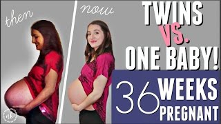 TWINS VS. ONE BABY: Comparing my Pregnancies | WEEK 36