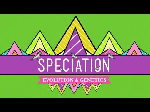 Speciation: Of Ligers & Men - Crash Course Biology #15