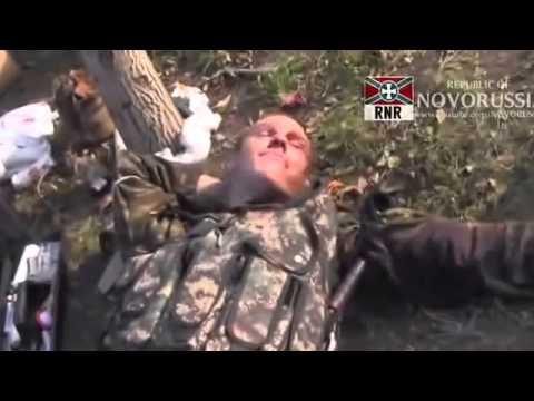 Смотреть как ополченцы днр мочат укропов видео за 2018