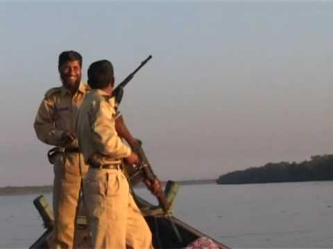 Xxx Mp4 সুন্দরবন ভ্রমন C Discover The World Biggest Mangrove Forest Sundarban Part 02 3gp Sex