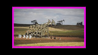 News - Economists: us shale industry of Russia, opec