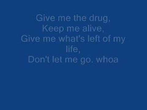 Rise Against - Injection (with lyrics)