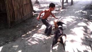 funny video-bangla,2015 /Bangladeshi video-mojar video