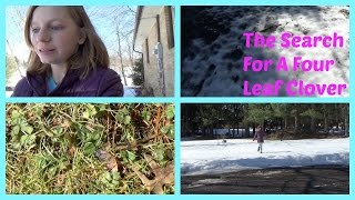 Looking For A Four Leaf Clover .... In SNOW!   OMMyGoshTV