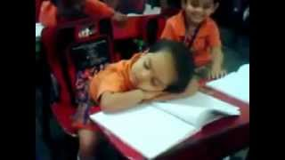 Small Baby Girl Sleeping In School Class Room - Cute & Funny