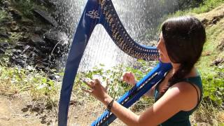 The Gael - THE LAST OF THE MOHICANS Theme - harp / harpe / 竖琴