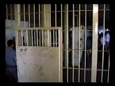 Servicio Penitenciario Bonaerense . Pelea en Pabellon.