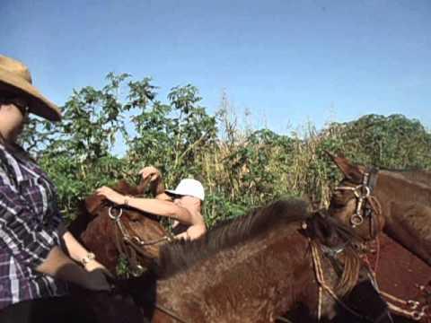 Andando de cavalo na fazenda