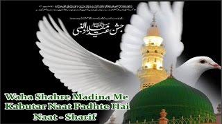 New Islamic Naat Sharif - वहा शहरे मदीना में कबूतर नात पड़ते है - Shadab O Paikar Naat