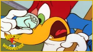 Woody Woodpecker Show | 1 HOUR COMPILATION | Cartoons For Children